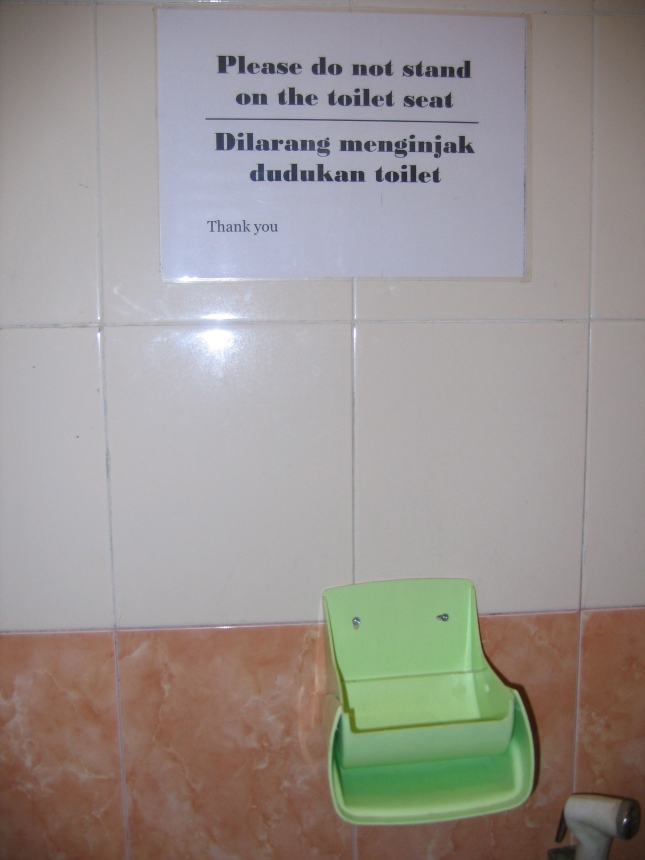 Please do not stand on the toilet...