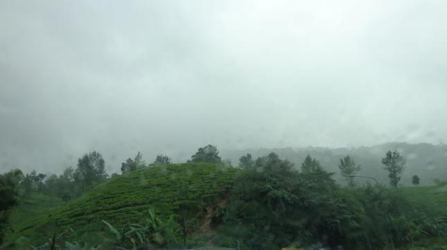 Beautiful Bogor